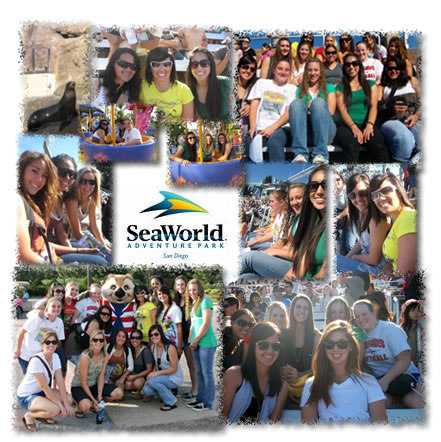 Celebrating at Seaworld